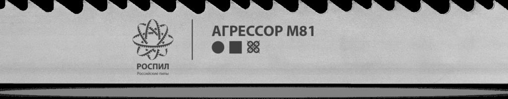 Агрессор М81